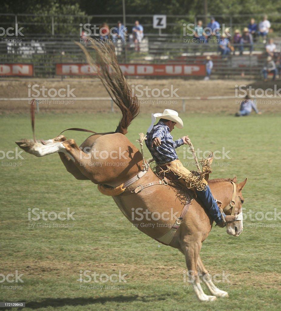 Saddle Bronc Riding stock photo