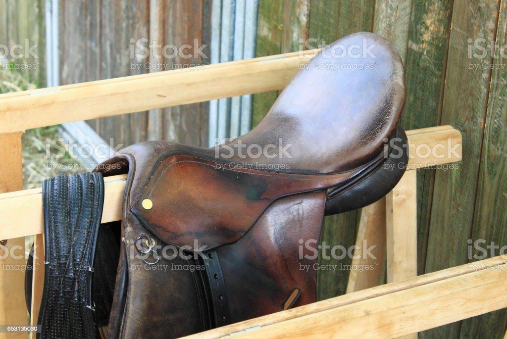 Saddle horse stock photo