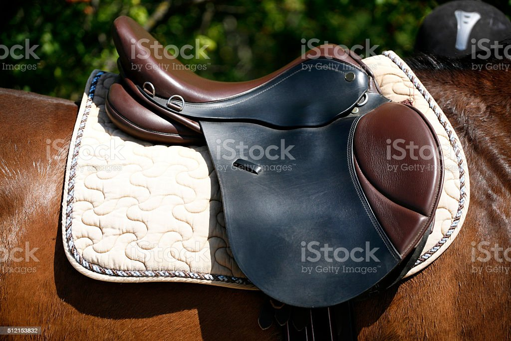 Saddle on a back of a horse stock photo