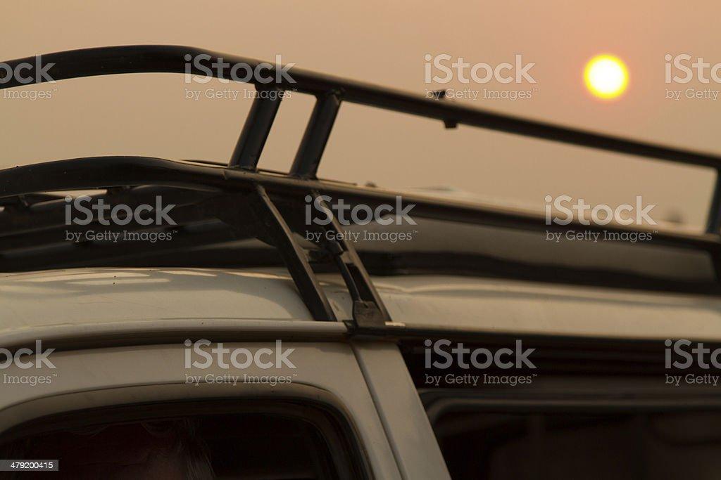 Safari at Sunset stock photo