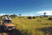 Safari goers watching elephants on the Serengeti Plain in Tanzania