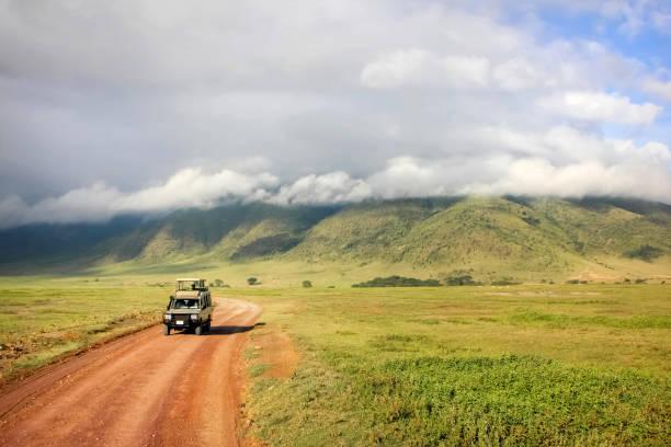Safari in Ngorongoro Crater National park. Tanzania. Safari in Ngorongoro Crater National park. Tanzania. tanzania stock pictures, royalty-free photos & images