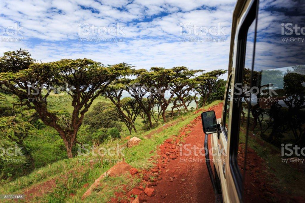 Safari dans le Parc National du cratère du Ngorongoro stock photo