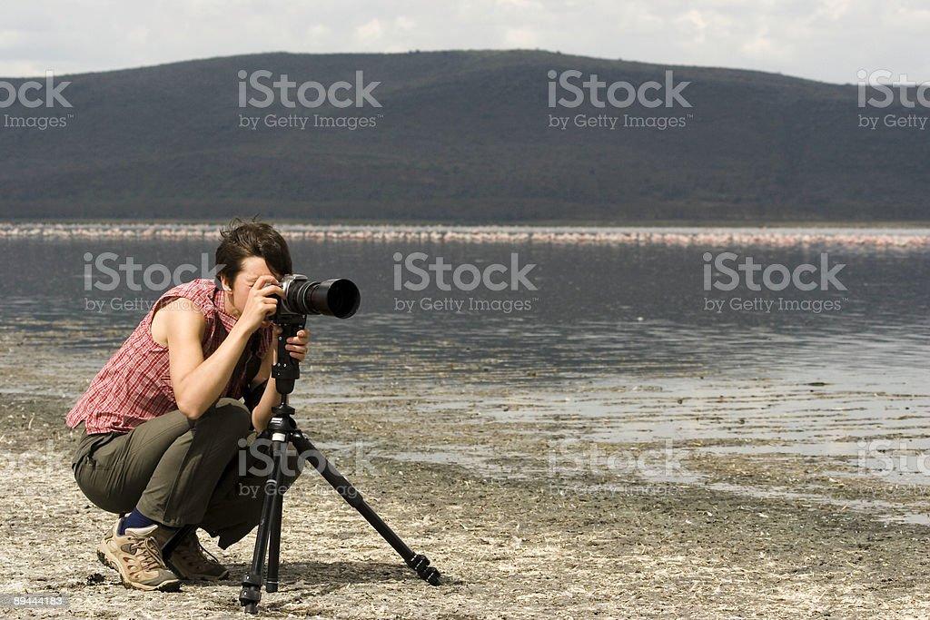 Safari Photography royalty-free stock photo