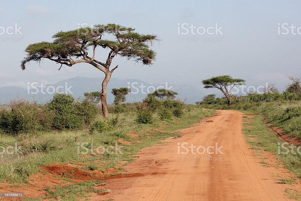Safari track in Kenya royalty-free stock photo
