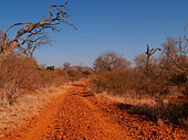 Unsealed dirt road with typical red sand leading through the outback of the red center of Australia
