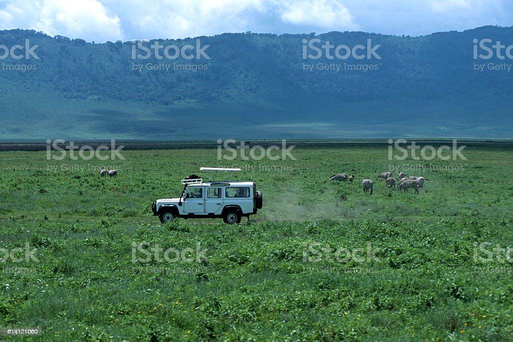 Safari Vehicle in the Ngorongoro Crater in Tanzani stock photo