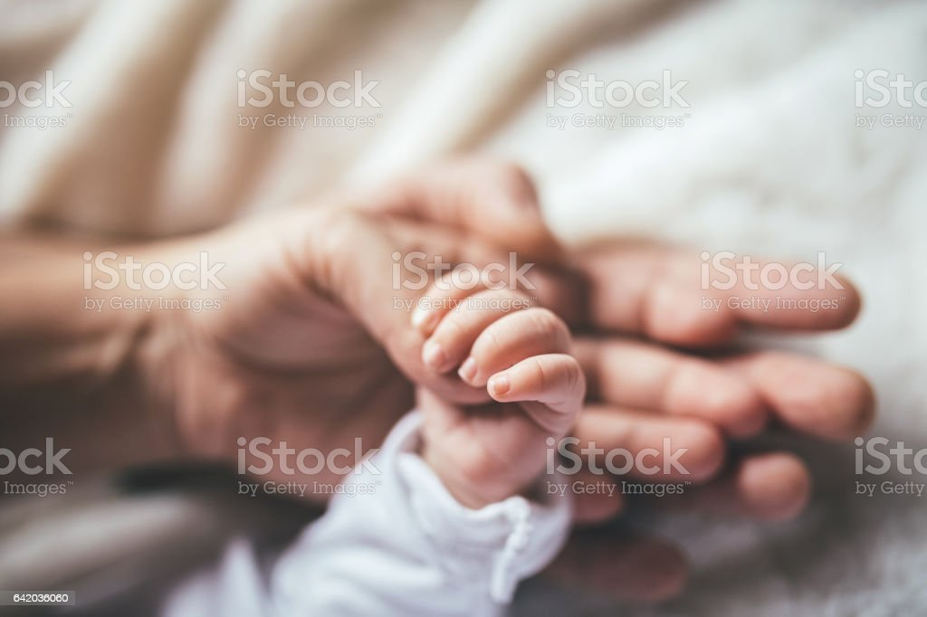 Safe in our hands! stock photo