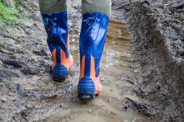 Safety rubber boots for the woodcutter. stock photo