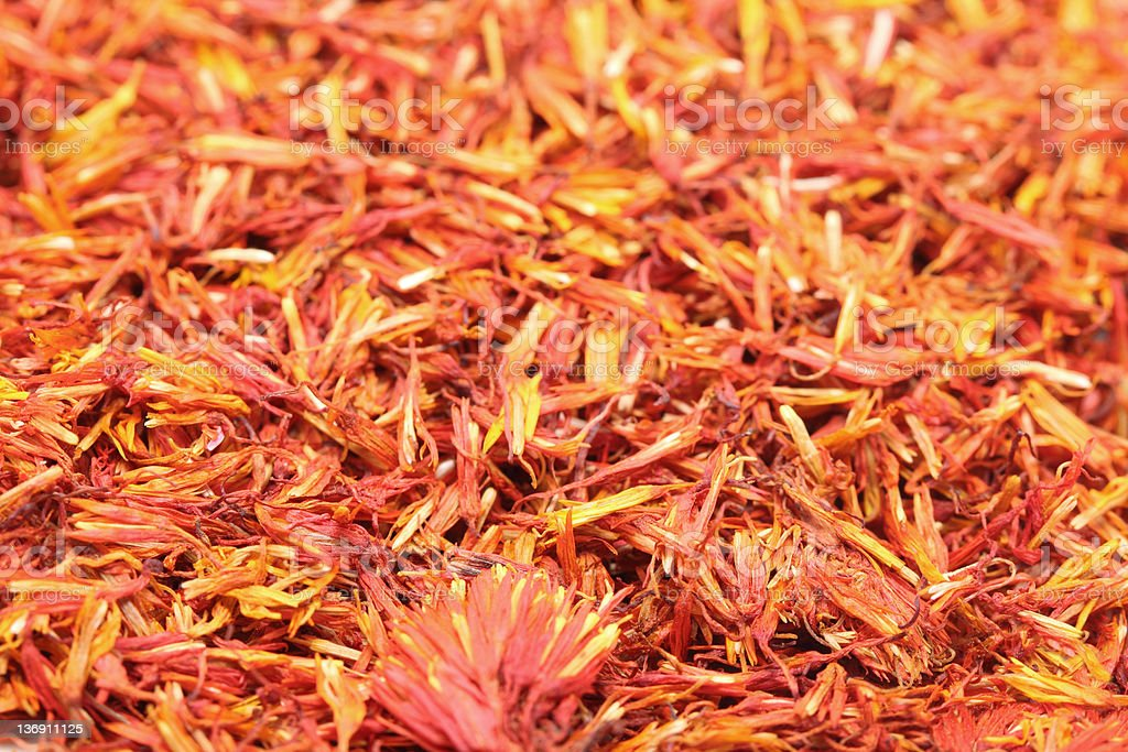safflower royalty-free stock photo