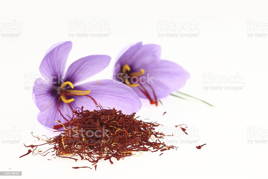 Saffron flower stock photo