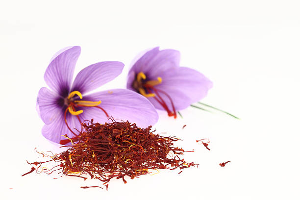 Saffron flower  http://www.microstock.gr/istock/all.jpg saffron stock pictures, royalty-free photos & images