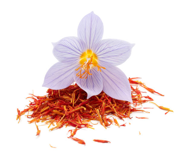 Saffron with crocus flower on white background Saffron with crocus flower isolated on white background saffron stock pictures, royalty-free photos & images