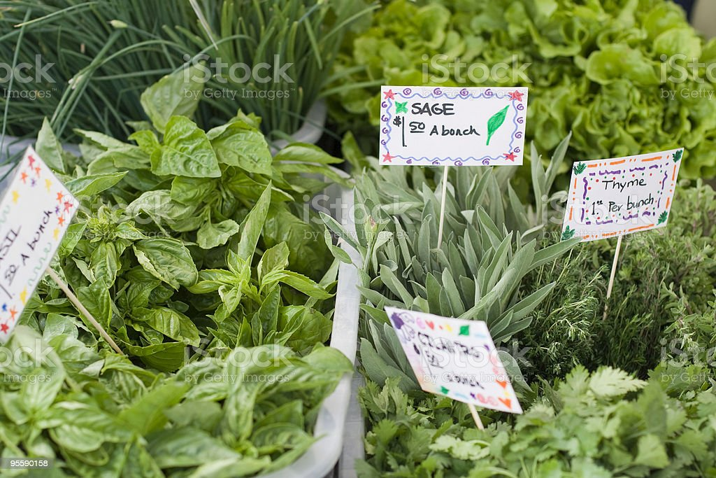Sage and fresh spices at a farmers market royalty-free stock photo