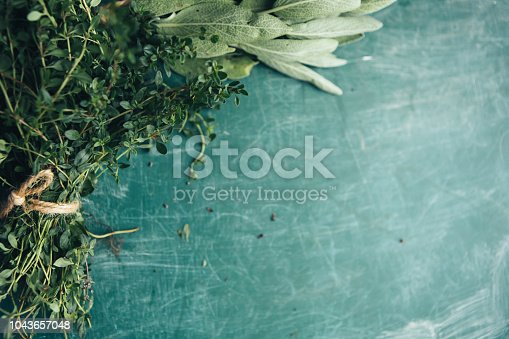 Bunch of fresh sage and oregano on a green chalkboard
