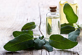 Sage and essential oil in a bottle, alternative medicine and spa