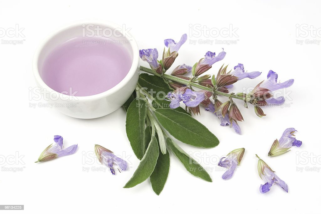 Sage essential oil royalty-free stock photo