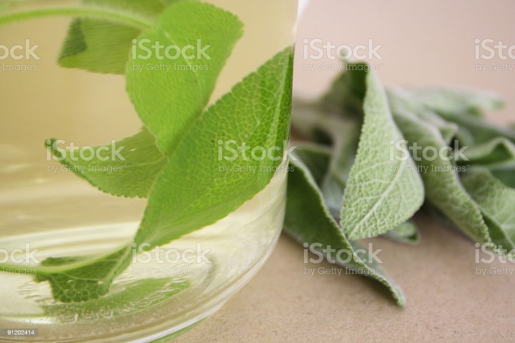 Sage herbal tea royalty-free stock photo