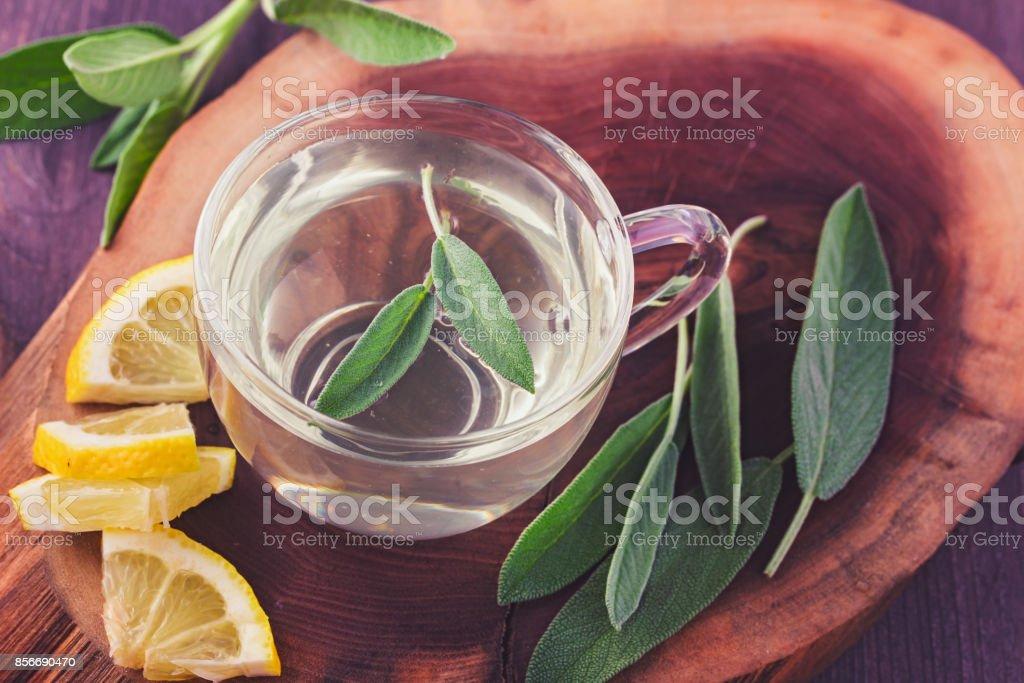Sage tea cup стоковое фото