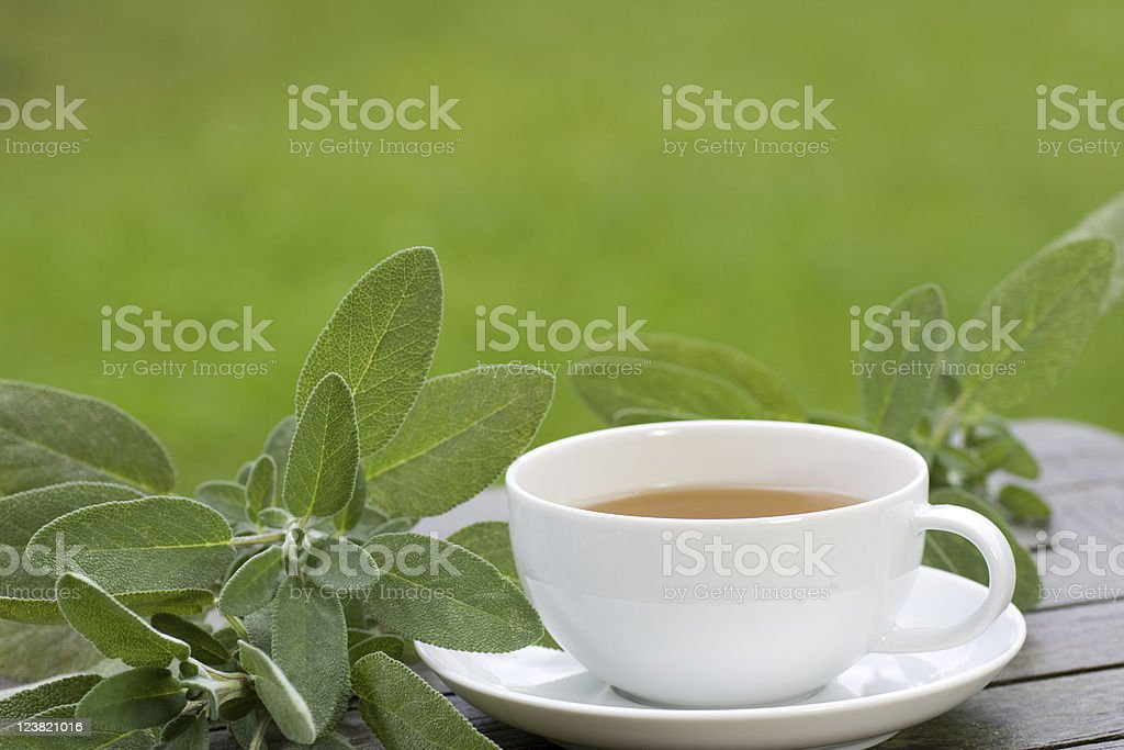 Sage tea is served hot stock photo