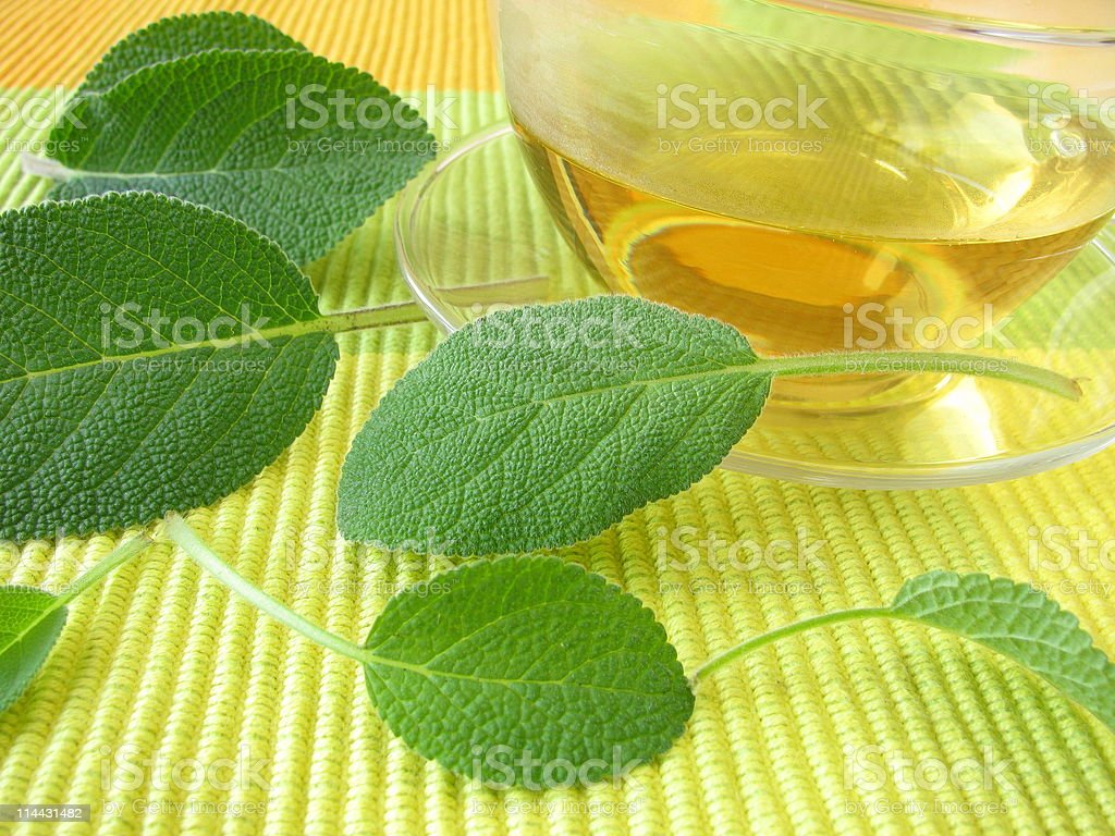Sage tea stock photo