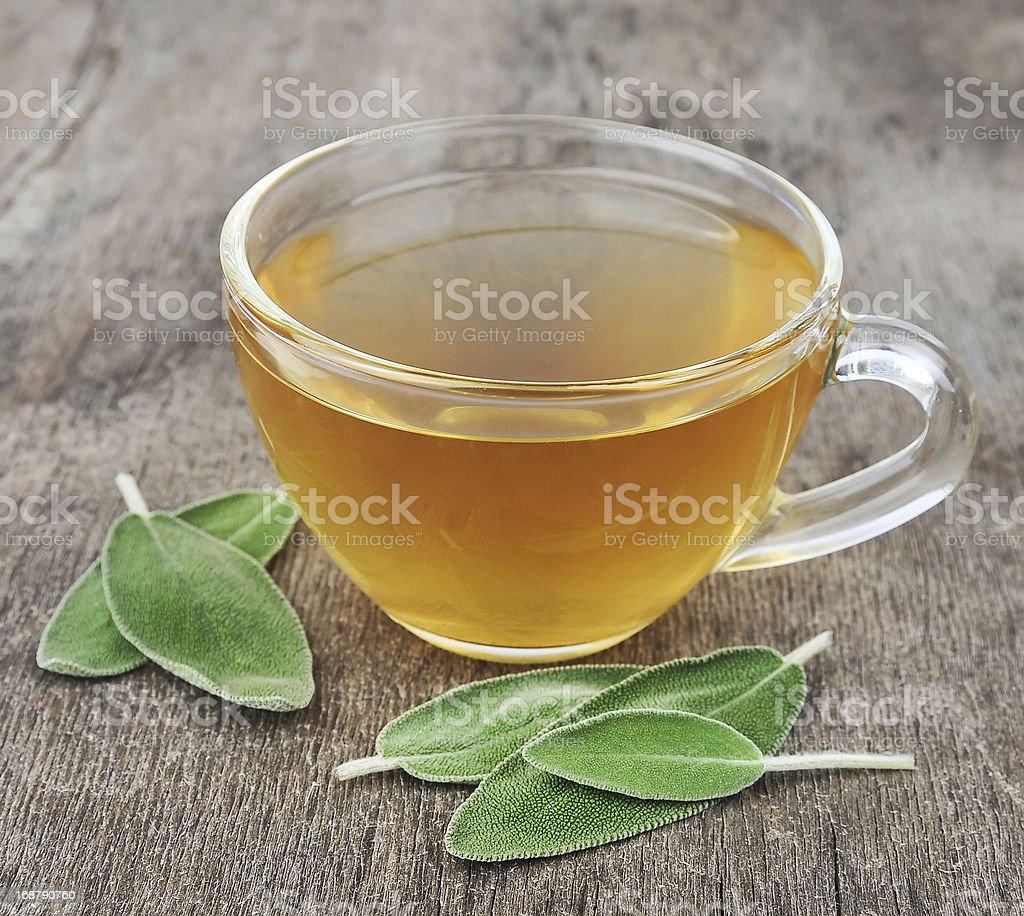 Sage tea stock photo