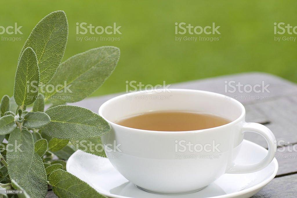 Sage tea served in the garden stock photo