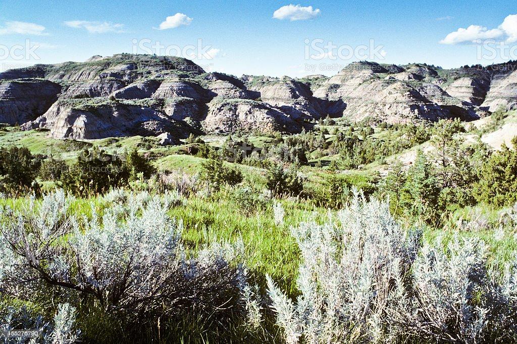 Sagebrush and Badlands royalty-free stock photo