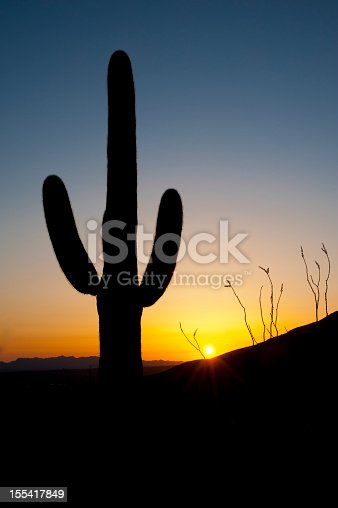 Saguaro cactus silhouettes in the foreground in front of a Sonoran Desert sunset. Superstition Mountains near Phoenix, Arizona.