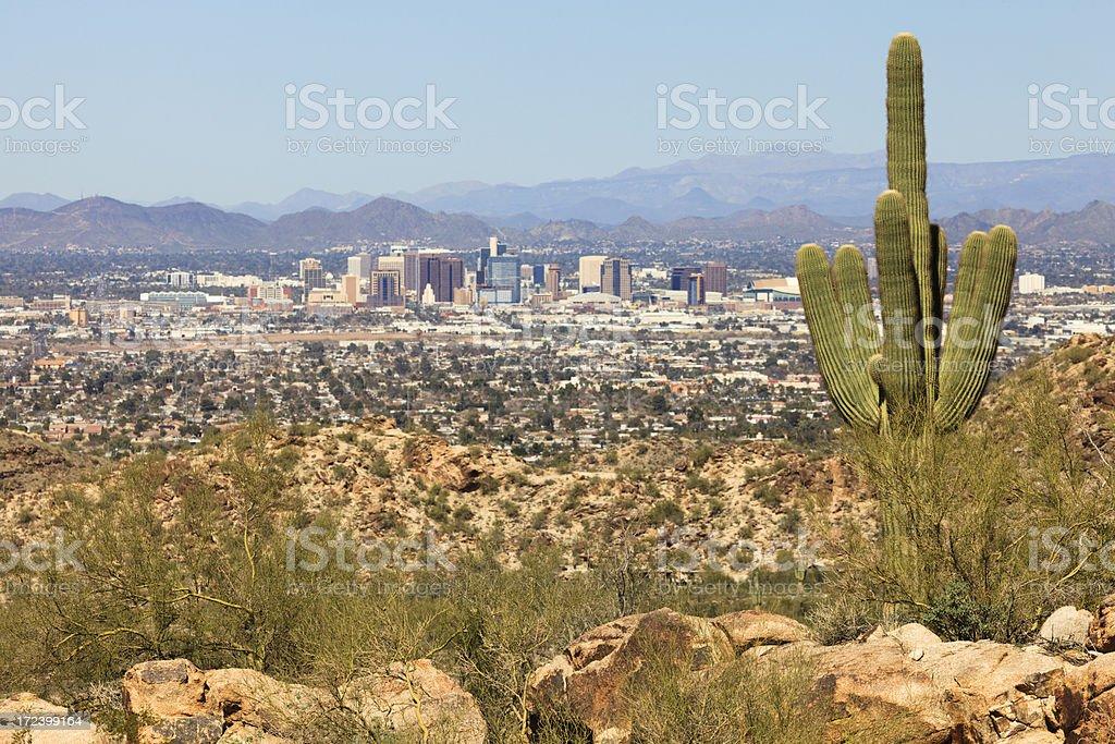 Saguaro Over Phoenix royalty-free stock photo