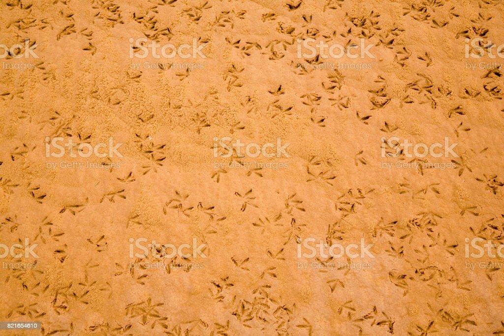 Sahara Desert, Libya stock photo