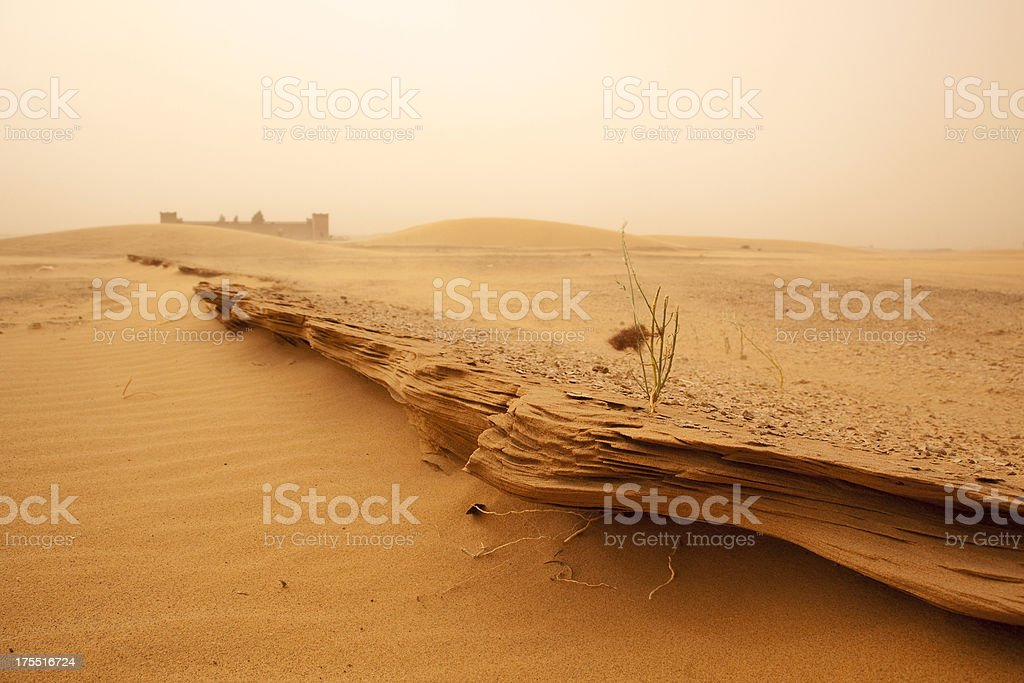 Sahara, Marokko – Foto