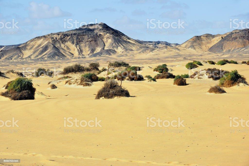 Sahara desert stock photo