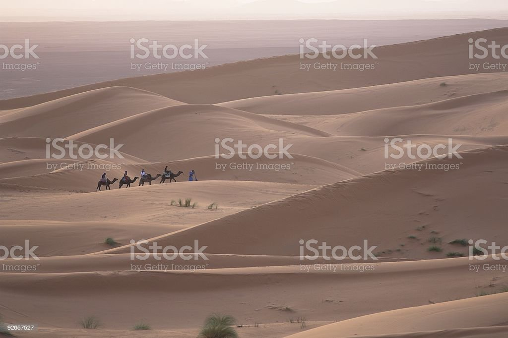 Sahara dunes and Caravan of camels royalty-free stock photo