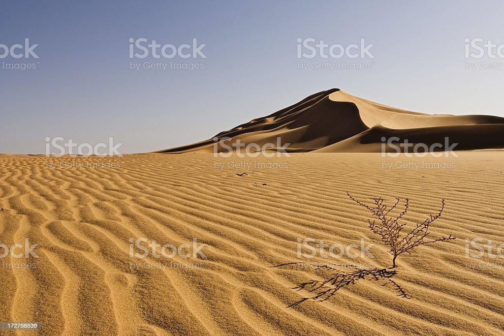 Sahara Landscapes royalty-free stock photo