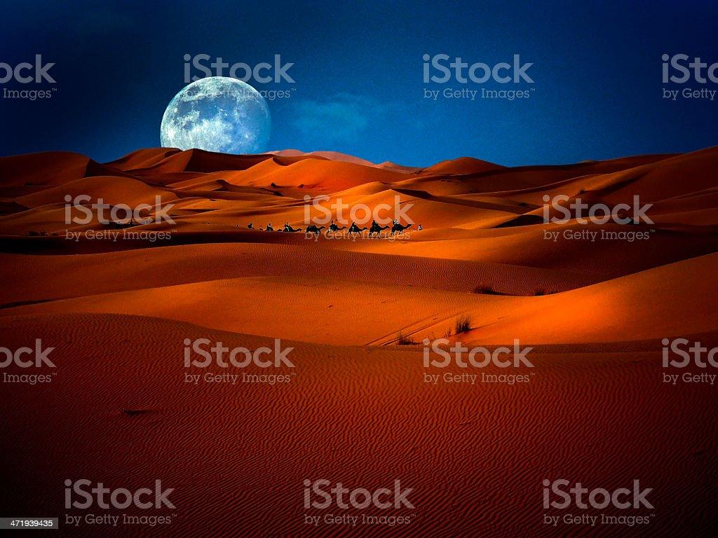 Sahara  Moon stock photo