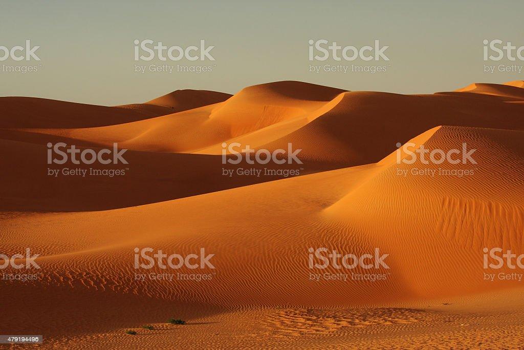 Sahara stock photo