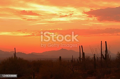 The sun slips beneath the Sonoran Desert just West of Tucson on a warm summer evening near the West Sahuaro National Monument Park in.