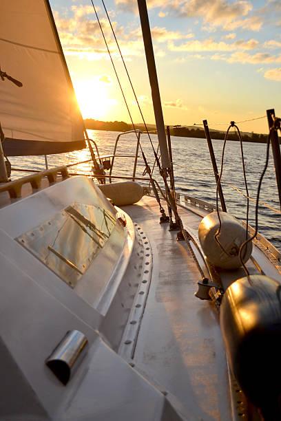 bateau au coucher du soleil - cage animal nuit photos et images de collection
