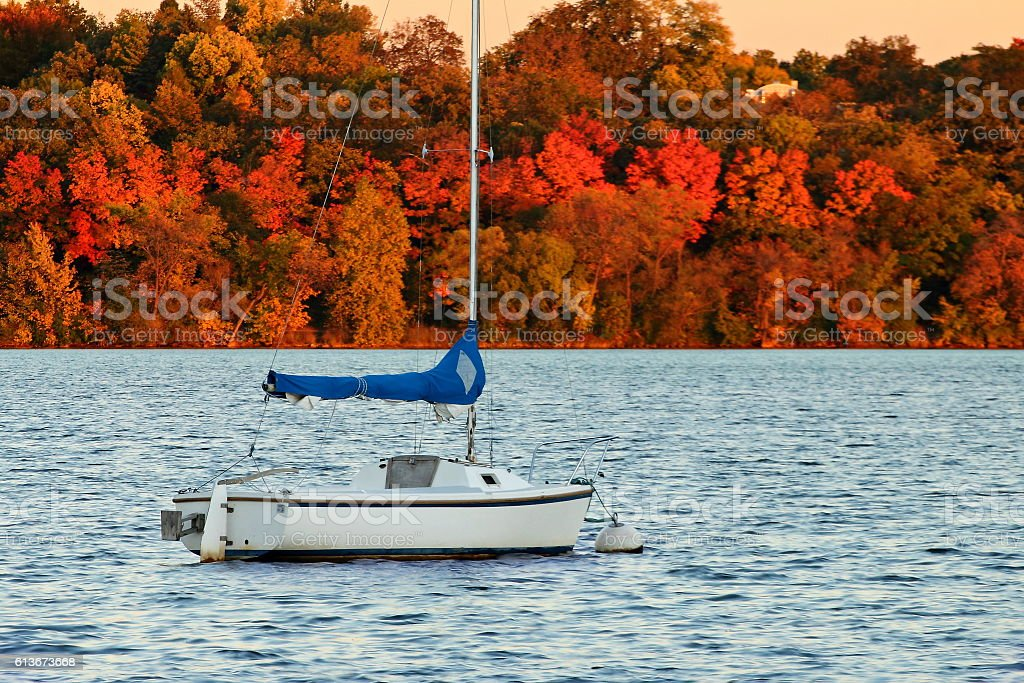 Sail Boat on Lake Harriet against Colorful Autumn Foliage stock photo