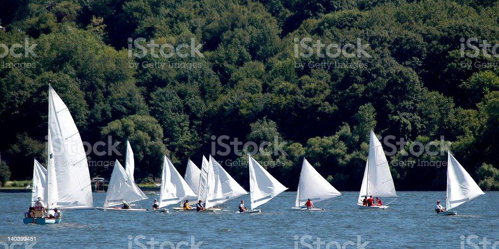 Sail Boat Race stock photo
