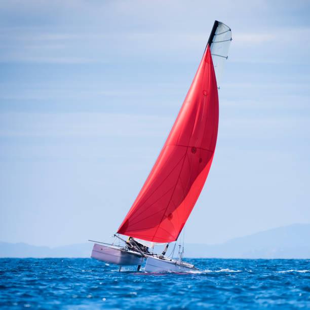 segelbåts regatta - katamaran bildbanksfoton och bilder