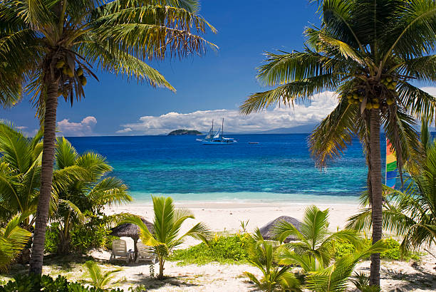 sail boat seen through palm trees, mamanuca group islands, fiji - fiji stock photos and pictures