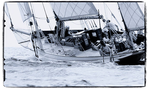 Sail (Black and white) stock photo