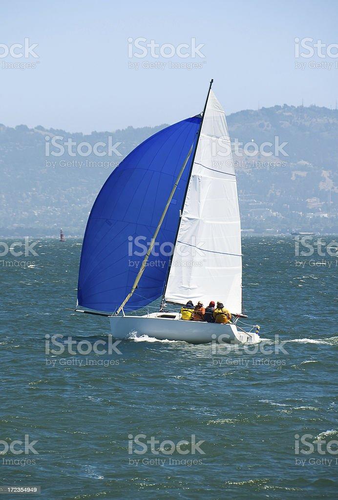 Sailboat in San Francisco Bay royalty-free stock photo
