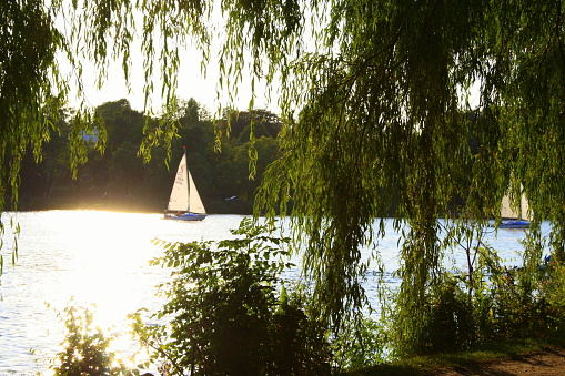 Sailboat in summer on Alster
