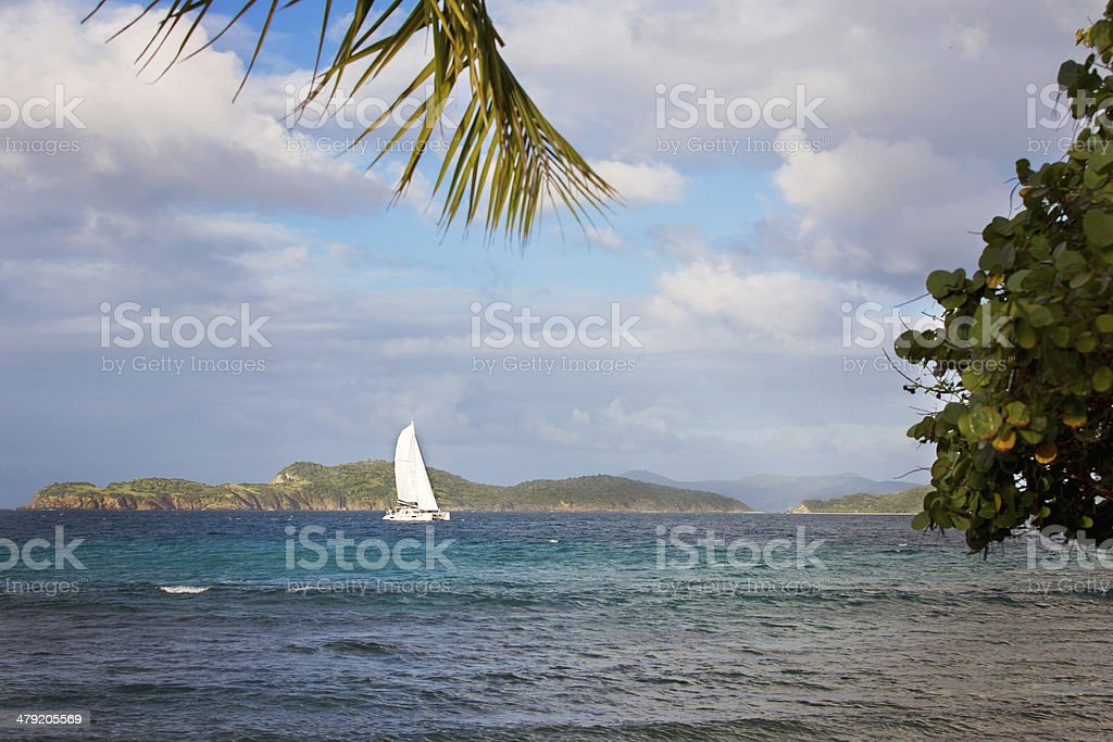 Sailboat in the Bay stock photo