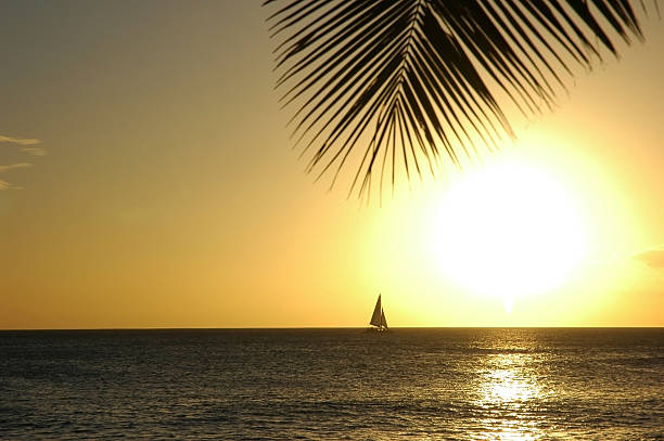 Sailboat in the Hawaiian Sun stock photo
