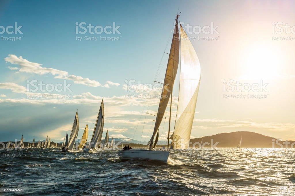 Sailboat on regatta on sunny autumn morning stock photo
