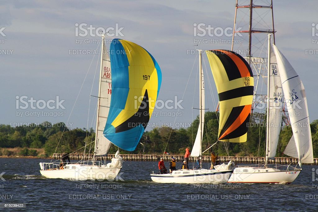 Sailboat Race on the Chesapeake Bay stock photo